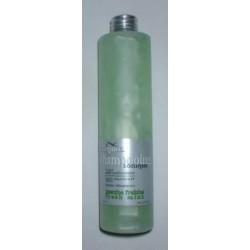 """Hairgum shampooing anti-pelliculaires """"Menthe Fraiche"""""""