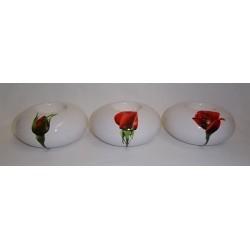 Phosphores boutons de rose